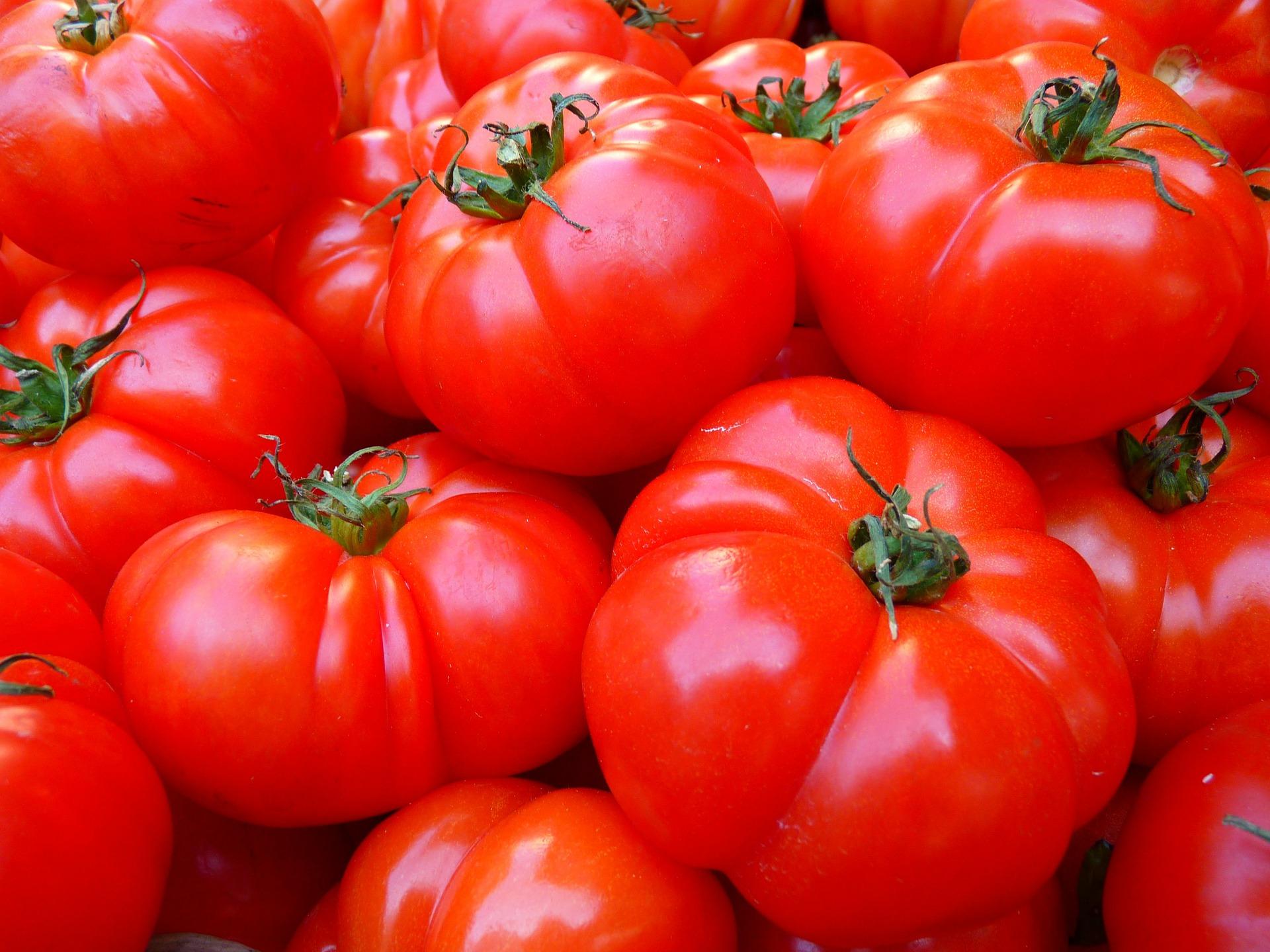 理想のトマトが美味しすぎてハマった!毎日摂取したいリコピンの効果と摂取量は?