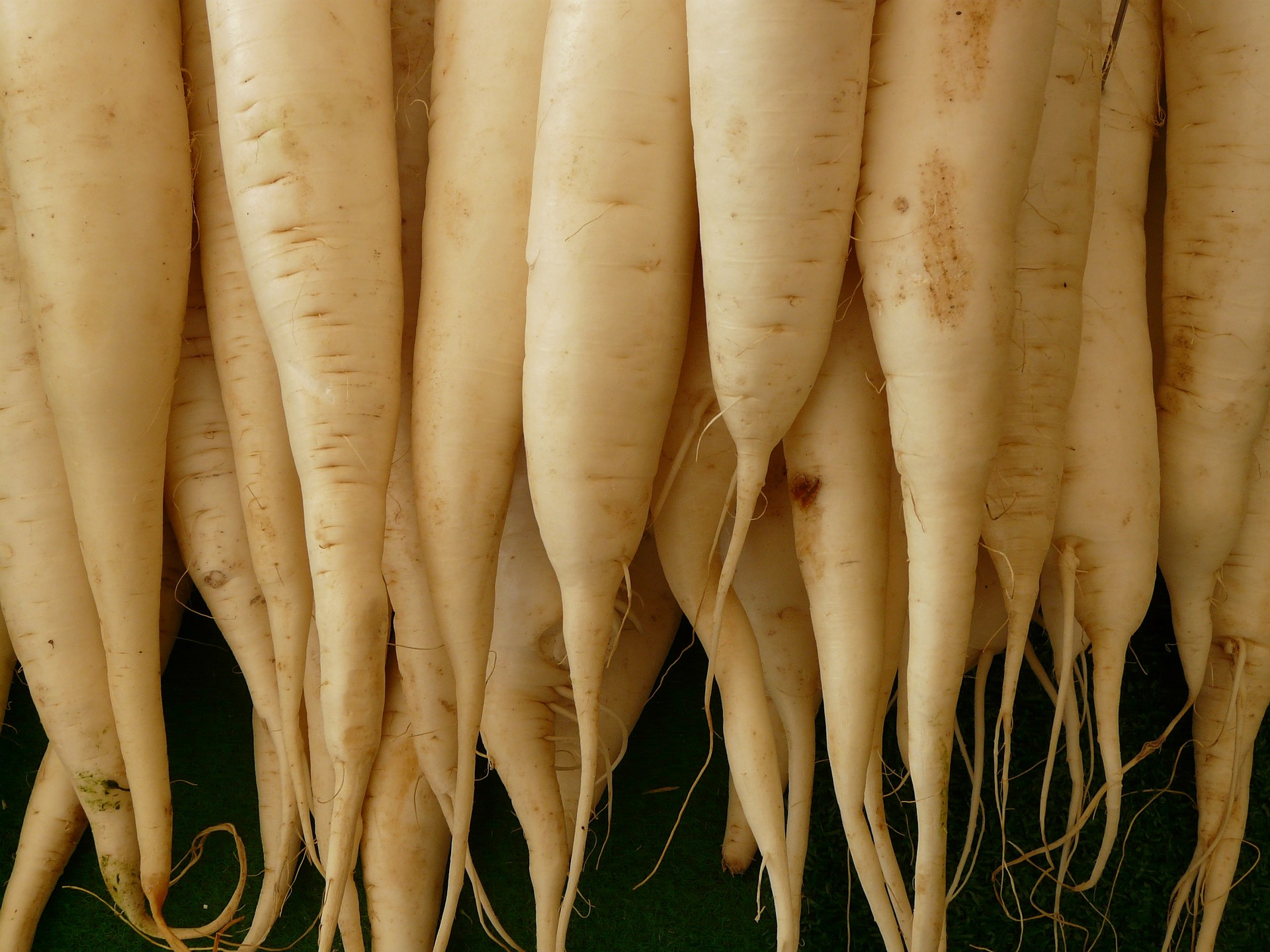 旬の野菜の7つの特徴☆農薬が使われていないサインもわかる!