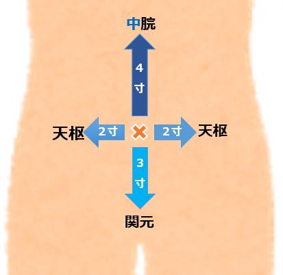 動脈 ゴロ 頸 外 【解剖学】ゴロあわせで簡単に覚える「〇〇三角シリーズ まとめ」(聴診三角・筋三角)|森元塾@国家試験対策|note