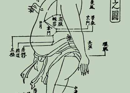 足の少陽胆経44穴の簡単な覚え方!語源イメージと語呂合わせで完璧!学生向け