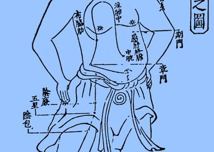 足の厥陰肝経14穴の簡単な覚え方!語源イメージと語呂合わせで完璧!学生向け