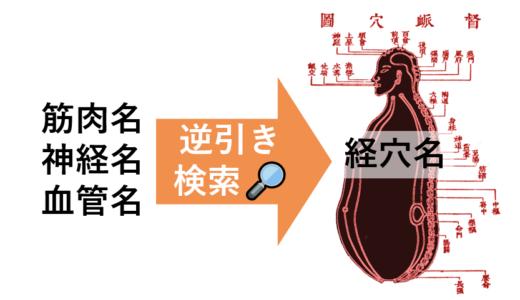 【解剖経穴一覧】経穴を筋肉名、神経名、血管名から逆引き検索!